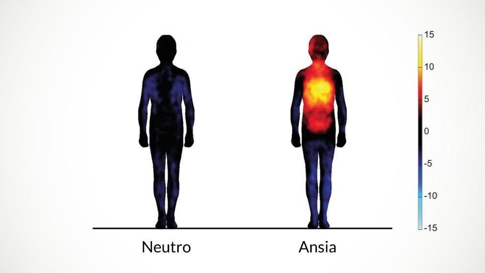 La mappa delle emozioni: così il corpo cambia temperatura