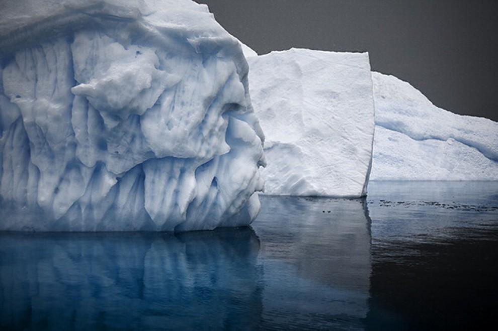 Gli ultimi iceberg: il rischio è l'estinzione