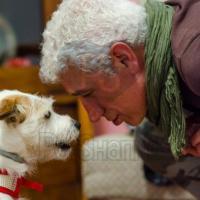 PetSharing, la community degli amici degli animali