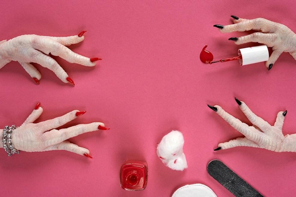 Matrimonio Tra Uomo E Animale : Quot cold feet al confine tra uomo e animale il