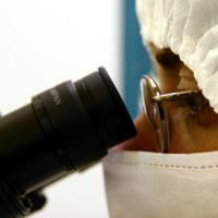 Procreazione assistita, legge 40 alla Consulta anche per il divieto per le coppie fertili