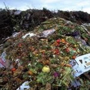 Le famiglie italiane sprecano cibo per 8,7 miliardi
