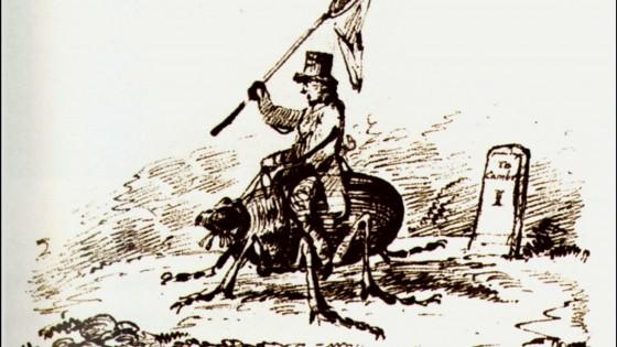 Buon compleanno Darwin: ritrovati gli scarabei dello scienziato
