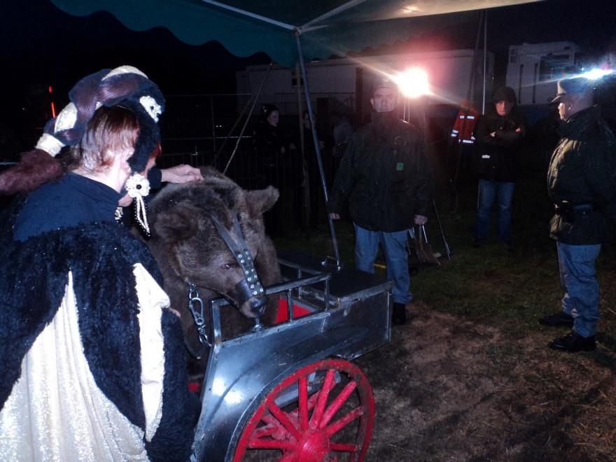 Cagliari, animali maltrattati: denuncia per gestori del circo