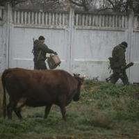 Crimea, la caserma assediata dai russi tra i pascoli