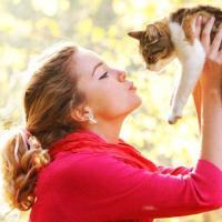 PetMe, la community degli amici animali