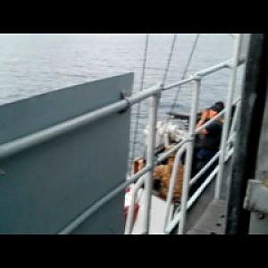Quegli spari al barcone degli scafisti: le foto che imbarazzano la Marina