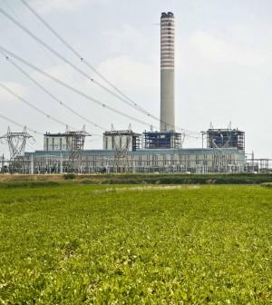Enel, condannati Scaroni e Tatò per il disastro ambientale di Porto Tolle
