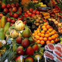 """""""Vegetariani più a rischio per allergie, depressione e tumori"""""""