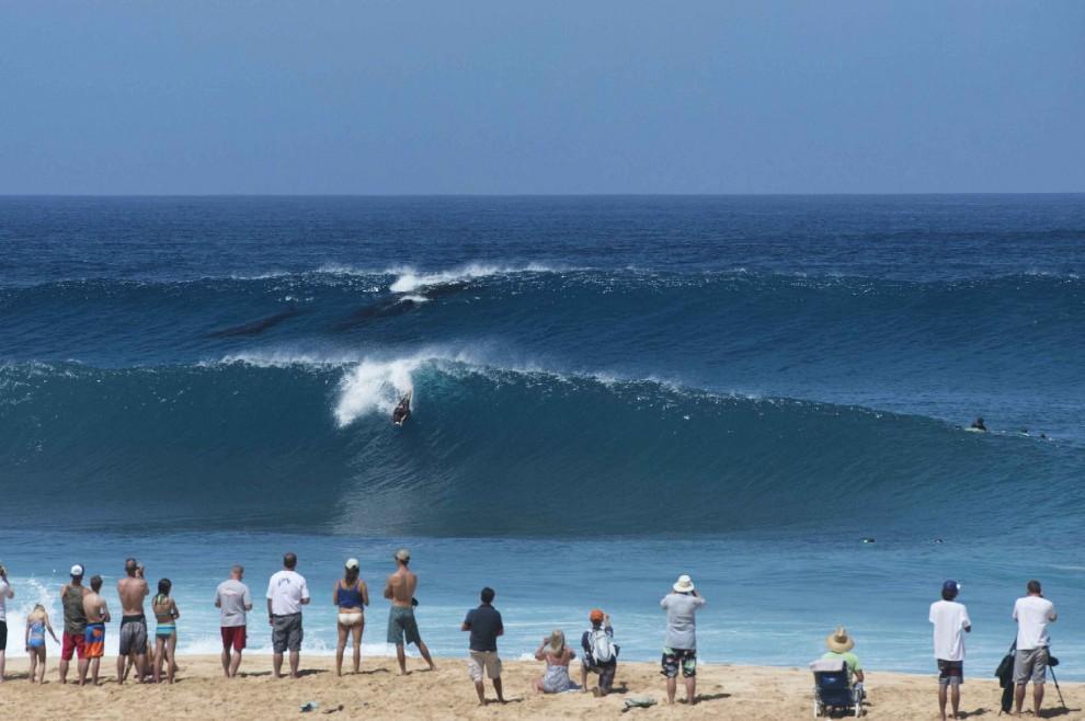 Hawaii, sorpresa in riva al mare: mamma balena surfa con il cucciolo
