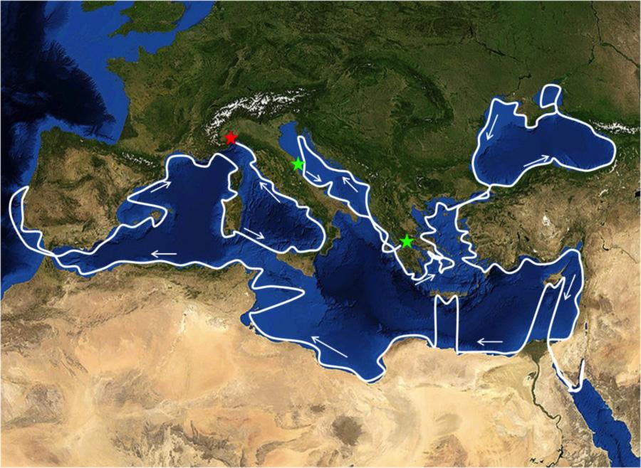 Il Mediterraneo di Mediterranea