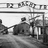 """Grillo 'riscrive' Primo Levi per attaccare Colle e premier. Comunità ebraica: """"Profana la Shoah"""""""