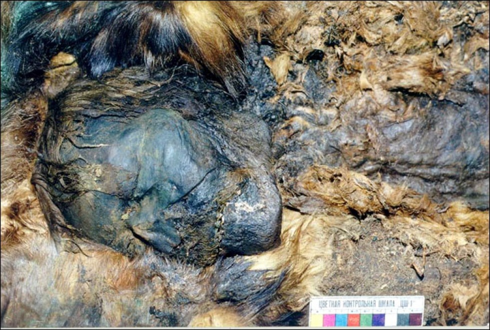 alien female corpse discovered in sibera - 700×469