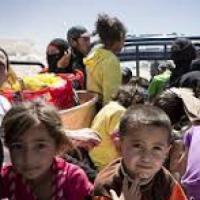 """Siria, la lettera dei rifugiati nelle celle egiziane, richiusi con i bambini: """"Fateci uscire da qui non siamo criminali"""""""