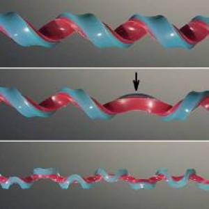C'è una nuova forma geometrica: scoperta l'emielica