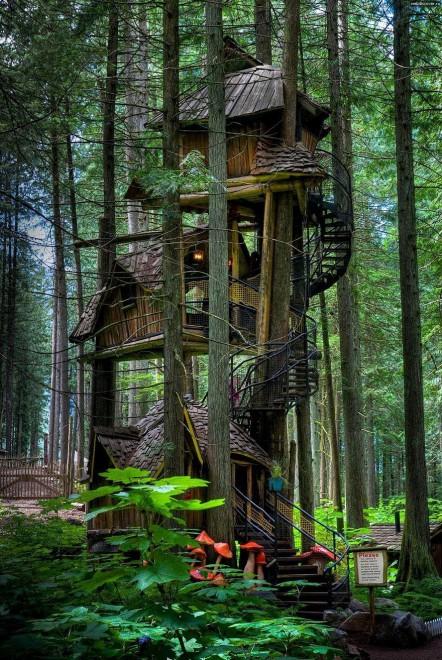 Le case sull 39 albero pi belle del mondo for Ad le case piu belle del mondo