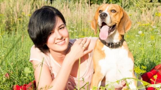 Sono i cani quelli che capiscono meglio gesti e voci dell'uomo