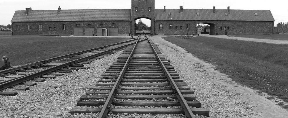 """In cerca della piccola """"M"""". """"Ma quei capelli biondi ad Auschwitz può averli visti solo per pochi minuti"""""""