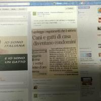 Gorizia, commenti razzisti contro Cécile Kyenge sul profilo Fb della Provincia