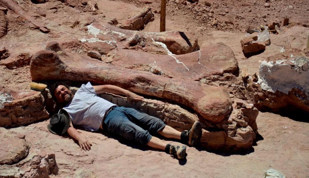 Argentina, scoperto il super dinosauro: sarebbe il più grande del mondo