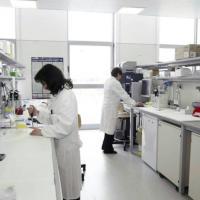 """Cancro alla prostata, nuova ricerca rilancia: """"Causato da una infezione sessuale"""""""