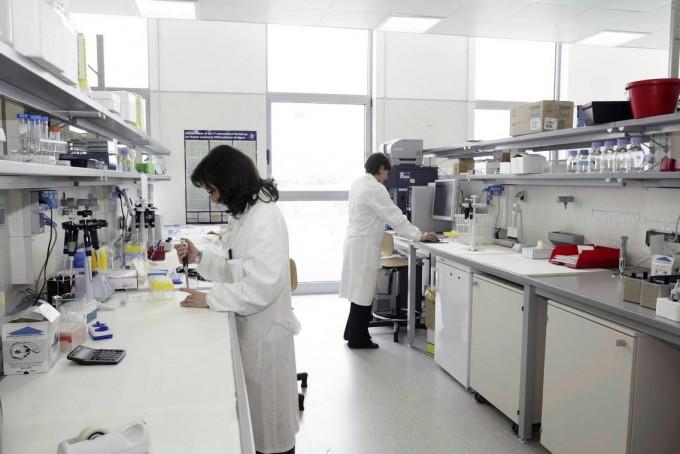 studi sulle cellule staminali per il cancro alla prostata