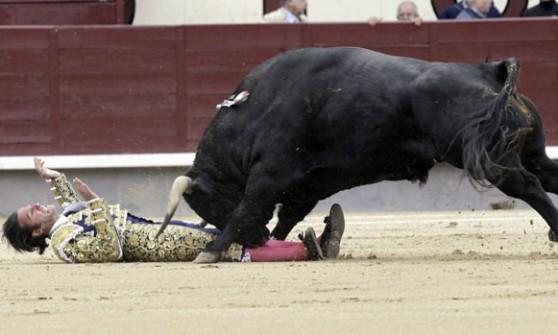 Madrid, sospesa la corrida: incornati tutti i toreri