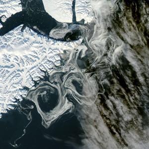 Scoperto meccanismo che 'scurisce' ghiacci Groenlandia