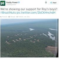 Amazzonia devastata per i Mondiali: la pubblicità fa discutere