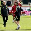 Spagna, Del Bosque litiga con Fabregas: ''Giocatori egoisti''