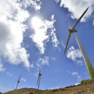 Tagli alle rinnovabili, scatta l'allarme degli investitori esteri