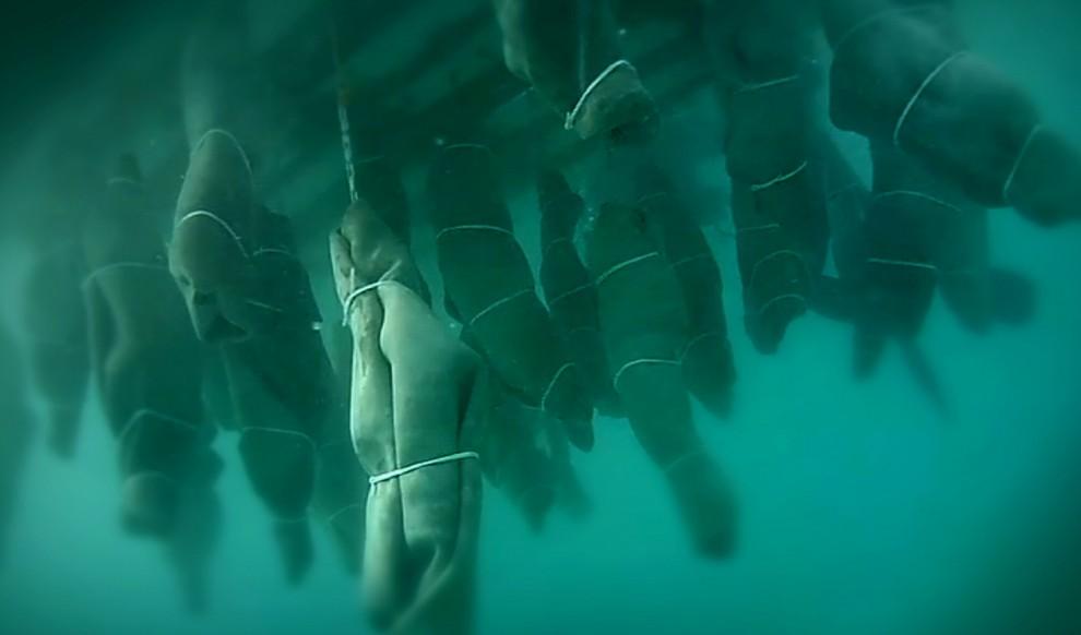 Pizzo Calabro, le statue in mare in memoria dei migranti