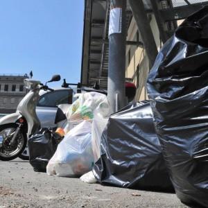 Trashpic, la app per segnalare i rifiuti abbandonati