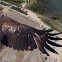 Fotografare col drone: gli scatti più belli del 2014