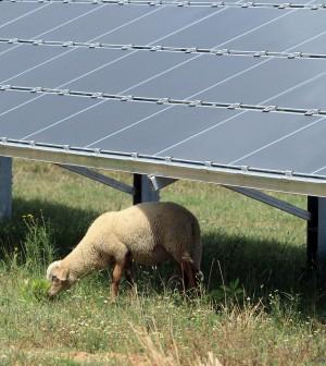 Bond e scaglioni per salvare il fotovoltaico. Anatocismo, valanga di richieste di stop