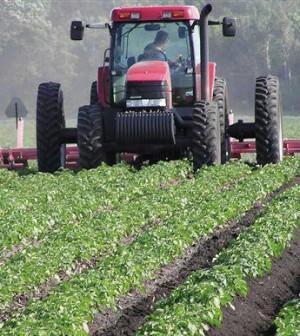I terreni del demanio ceduti a 50 mila giovani agricoltori