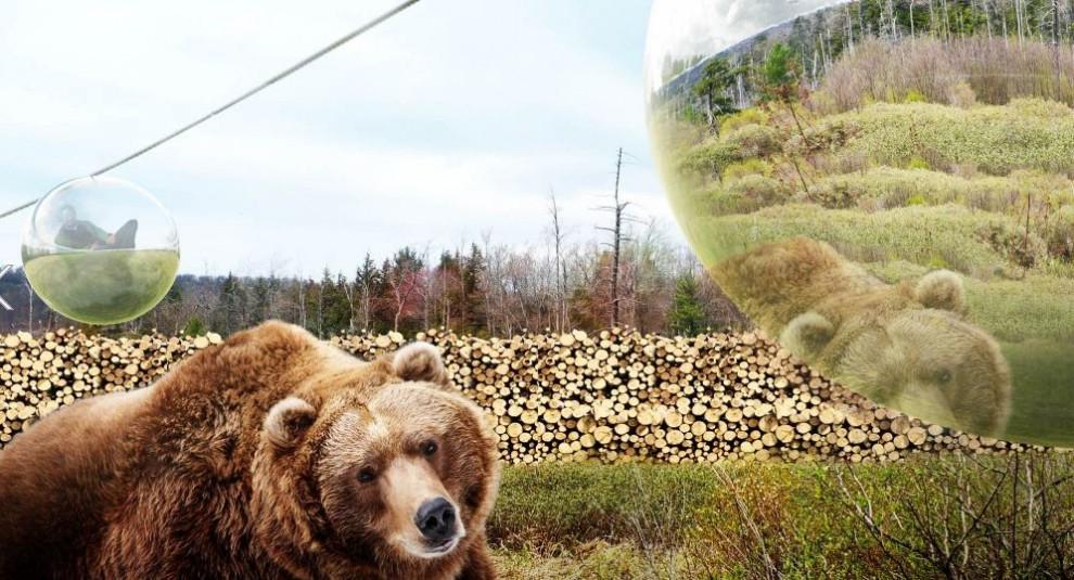Danimarca, lo zoo del futuro: i visitatori saranno nascosti