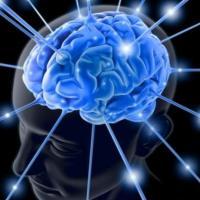 Parkinson, scoperti 6 nuovi fattori genetici