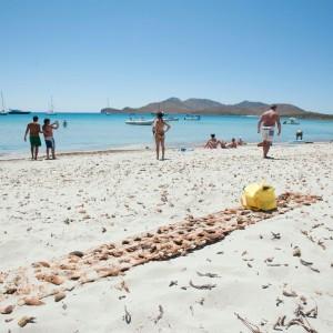 Bombe sotto il mare e sulla spiaggia quei tuffi da brivido a Capo Teulada