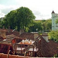 Lituania: buongiorno sul tetto, la colazione è rischiosa