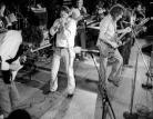 Woodstock, c'erano anche loro.