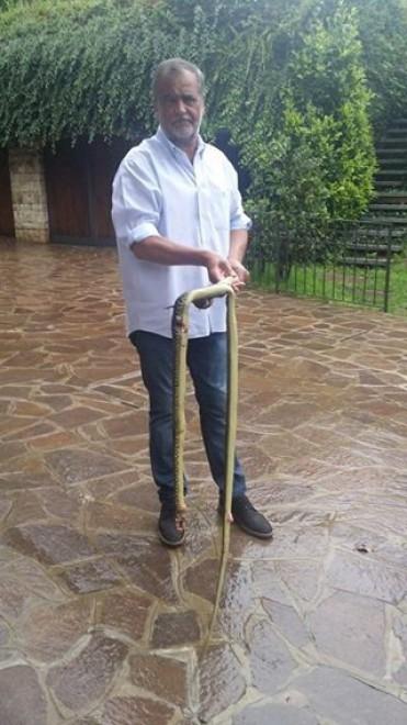Calderoli cattura serpente e posta foto: la protesta in rete, denunciato