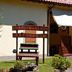 Capodarco Buon cibo e solidarietà: ecco l'agriturismo della Comunità di Capodarco a due passi da Roma