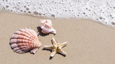 Sabbia, conchiglie e acqua di mare: i massaggi dell'estate
