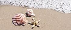 Sabbia, conchiglie e acqua di mare I massaggi che prolungano l'estate