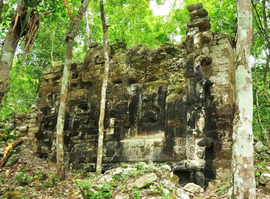 Messico, scoperte antiche città Maya: erano nascoste nella giungla