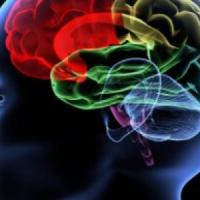 Addio ai brutti ricordi, la scienza li trasformerà in belli