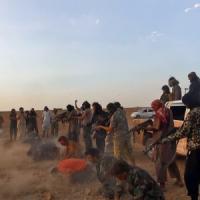 Siria, 40 caschi blu catturati sul Golan. Is giustizia decine di soldati di Damasco