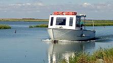 Acqua, saline, uccelli Scopri il Delta del Po    foto
