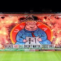 Un maiale in curva: l'ira dei tifosi polacchi contro l'Uefa